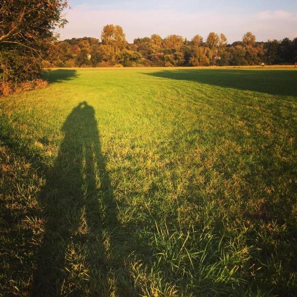 Spaziergang in der wunderbaren Oktobersonne... #autumn #angels #herbst #ruhrpott #mülheim #sunset #schattenbild